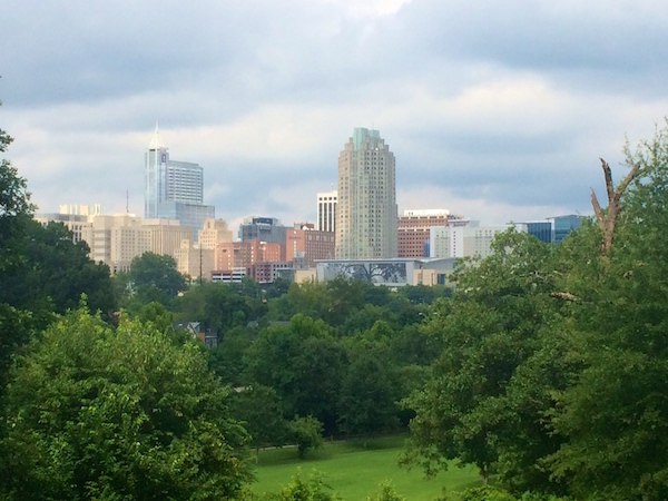 View of downtown Raleigh from Dorothea Dix Park.